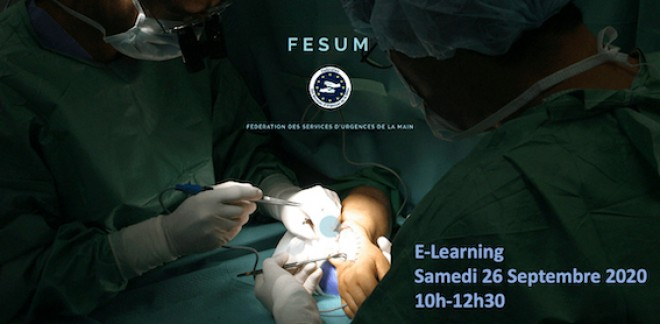 E-Learning FESUM